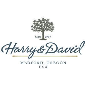 Harry David web